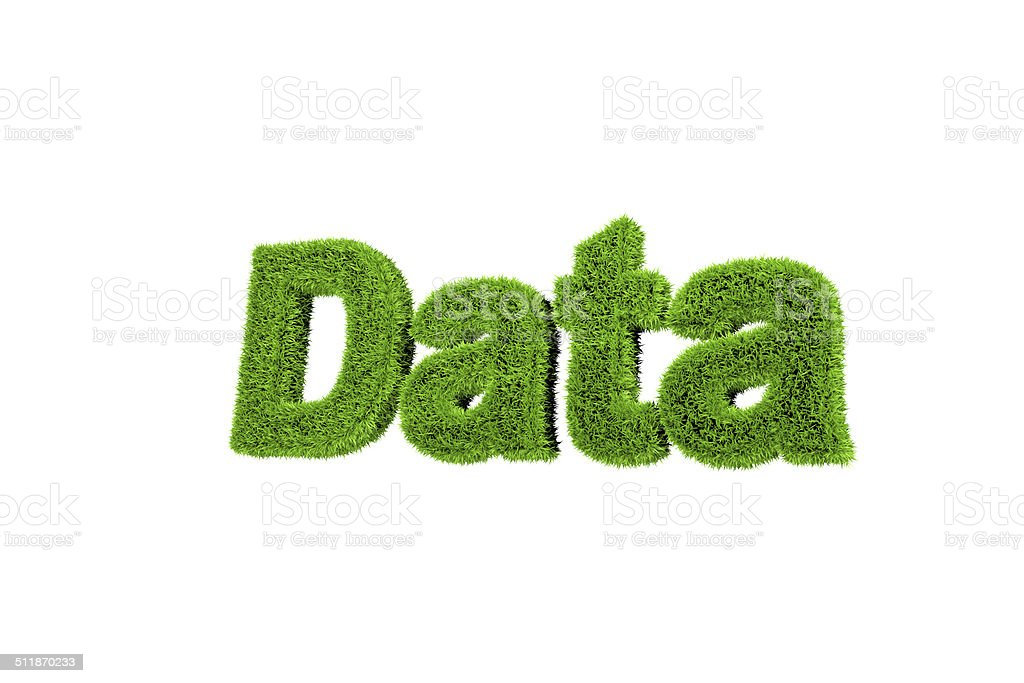 Grass made word data stock photo