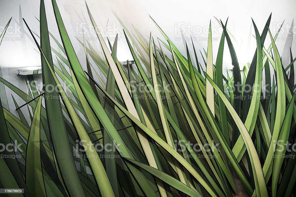 grass model royalty-free stock photo