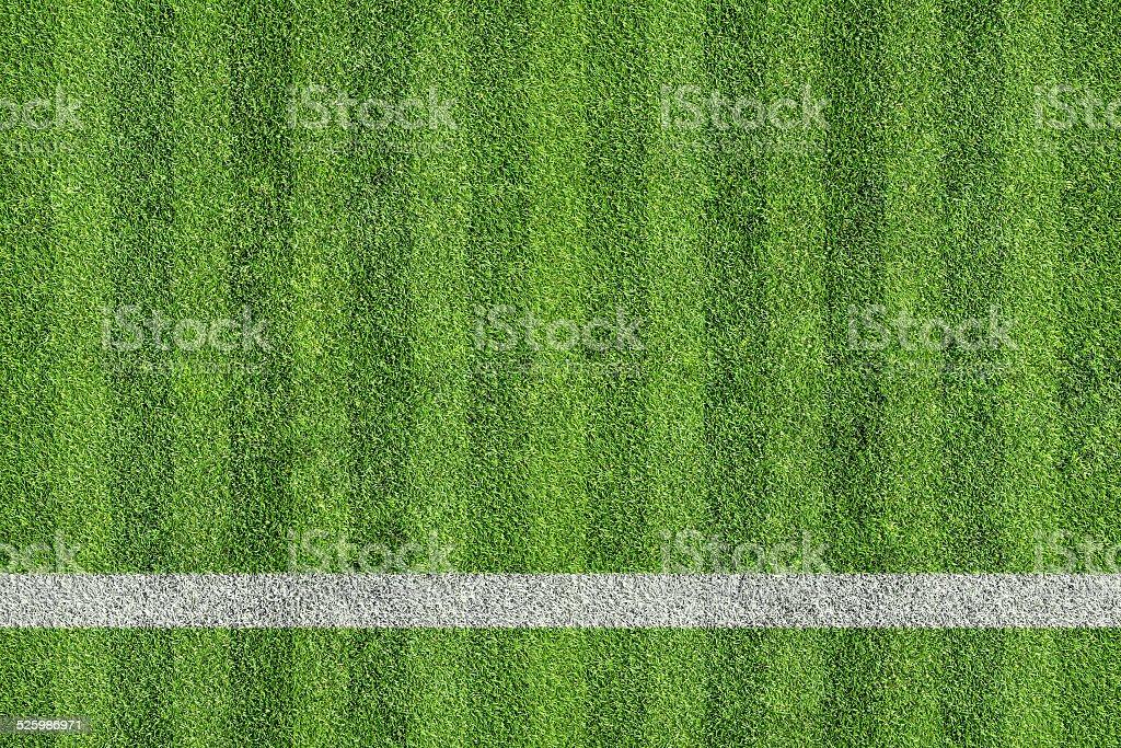 grass of sport field stock photo