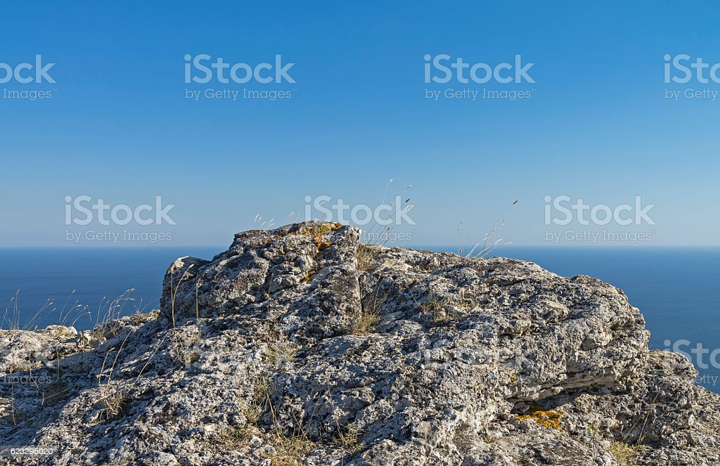 Grass on a rocky cliff on the background of the stock photo