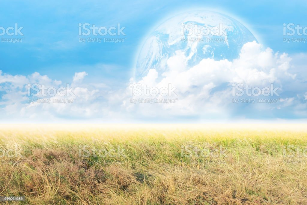 Grass on the field with blue skies and planet. stock photo