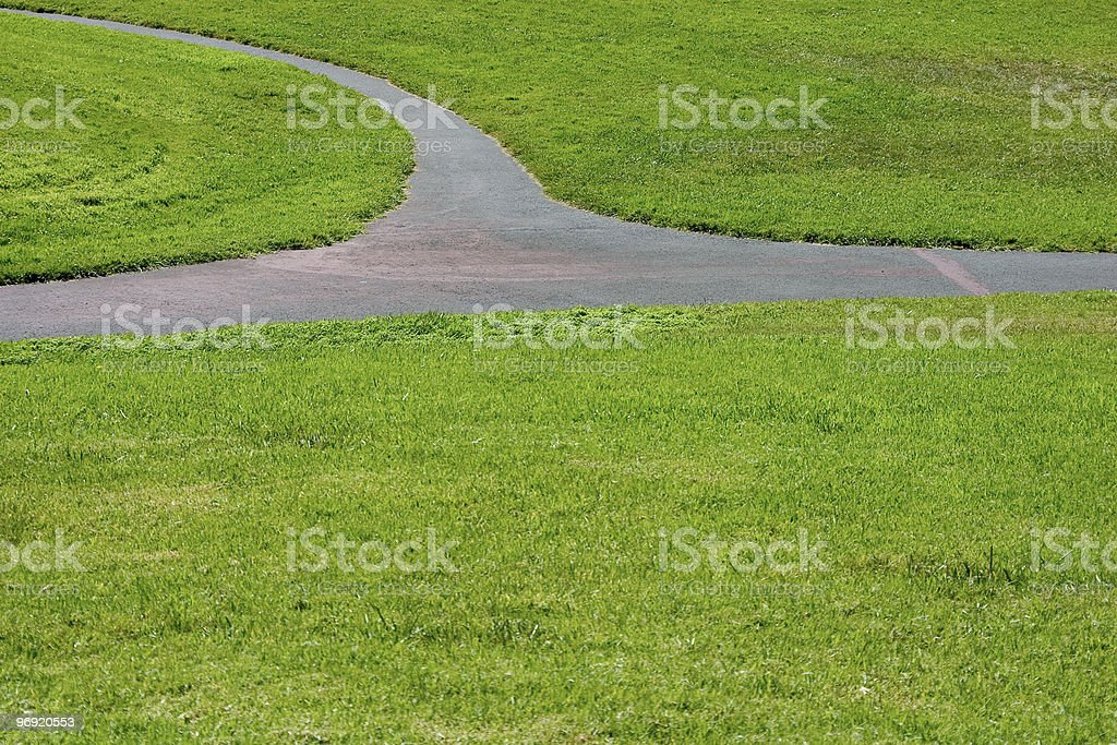 Grass Path #3 stock photo