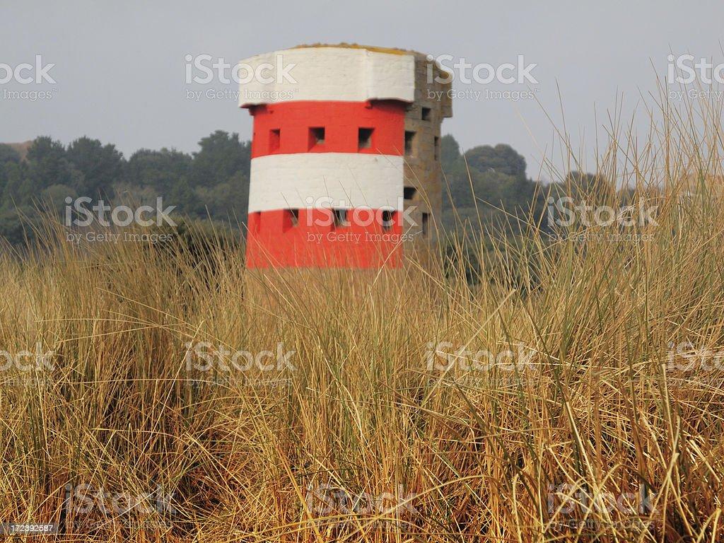 Grass. stock photo