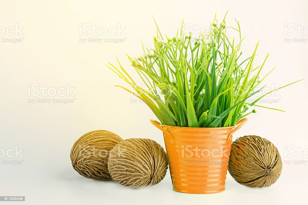 Grass plastic in orange flowerpot color with pong pong seed. stock photo