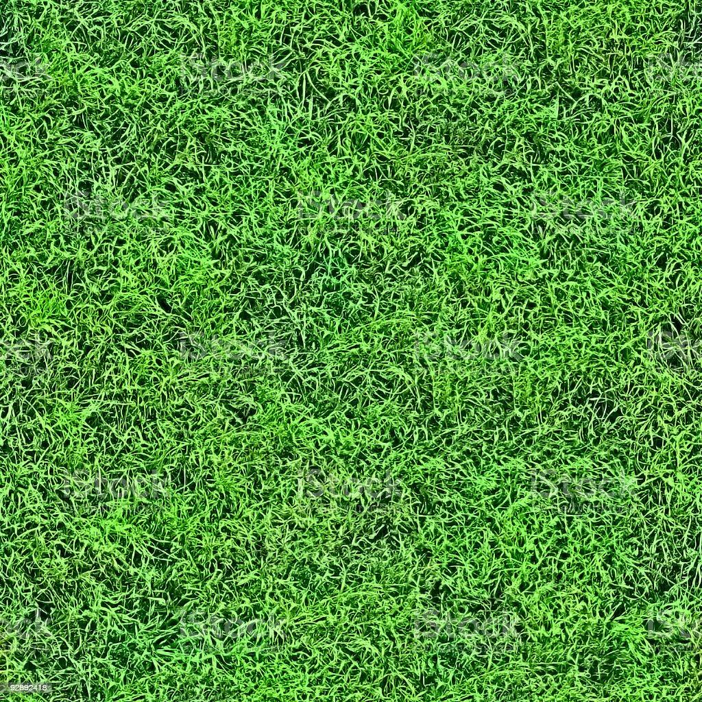 Grass seamless pattern. royalty-free stock photo