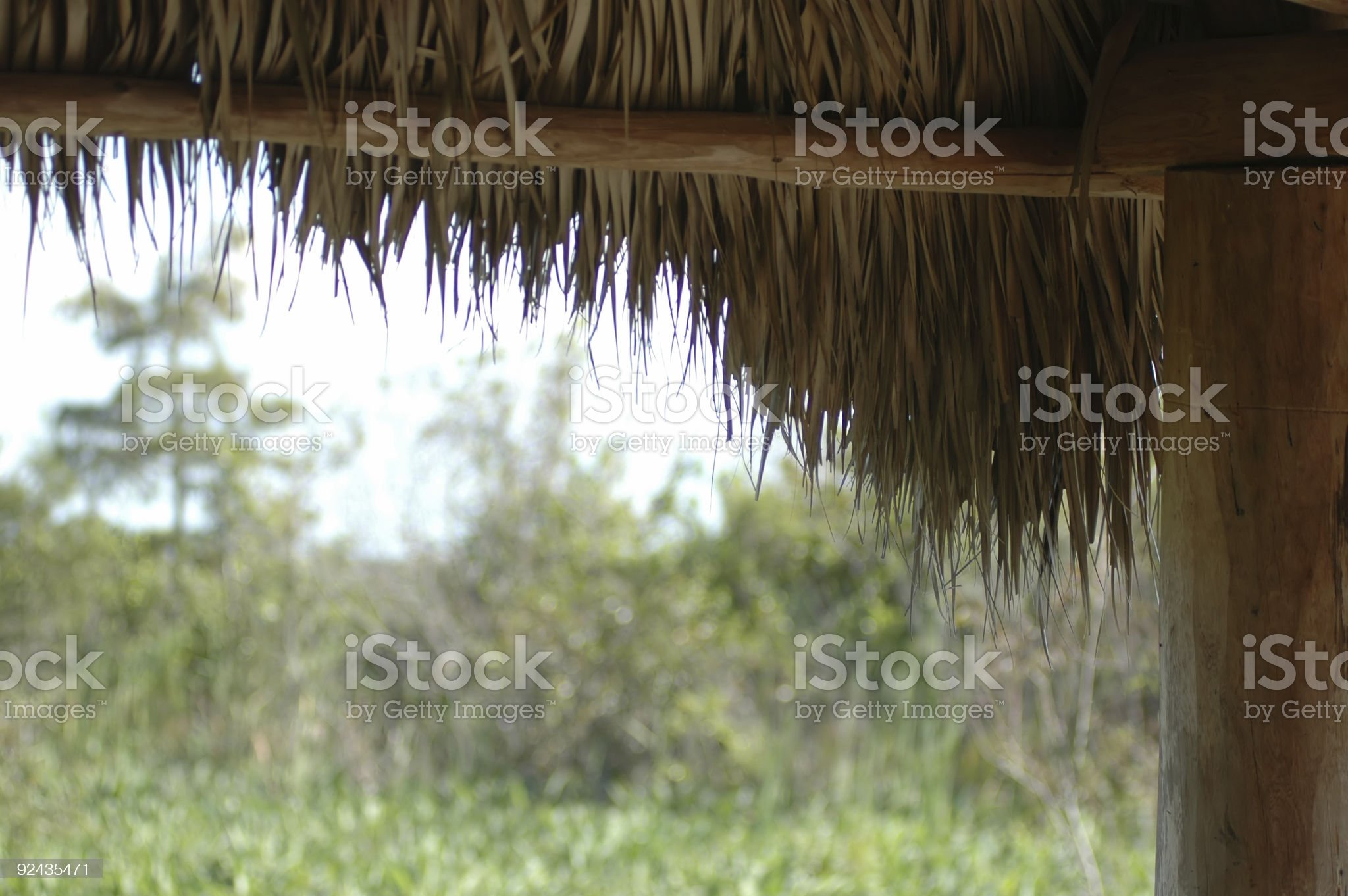 grass thatch roofline royalty-free stock photo