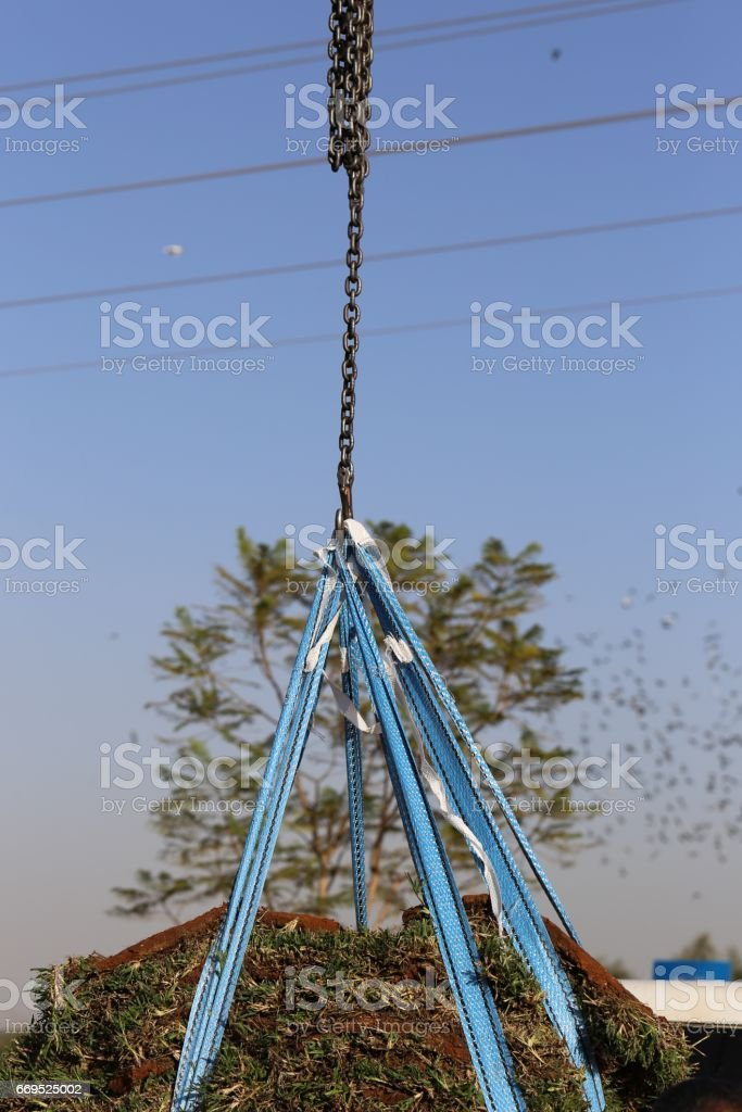 Grass Transfering, Lawn pieces Lifting. stock photo