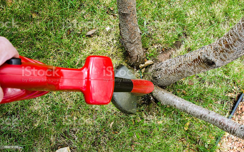 Grass Trimmer at Work royalty-free stock photo