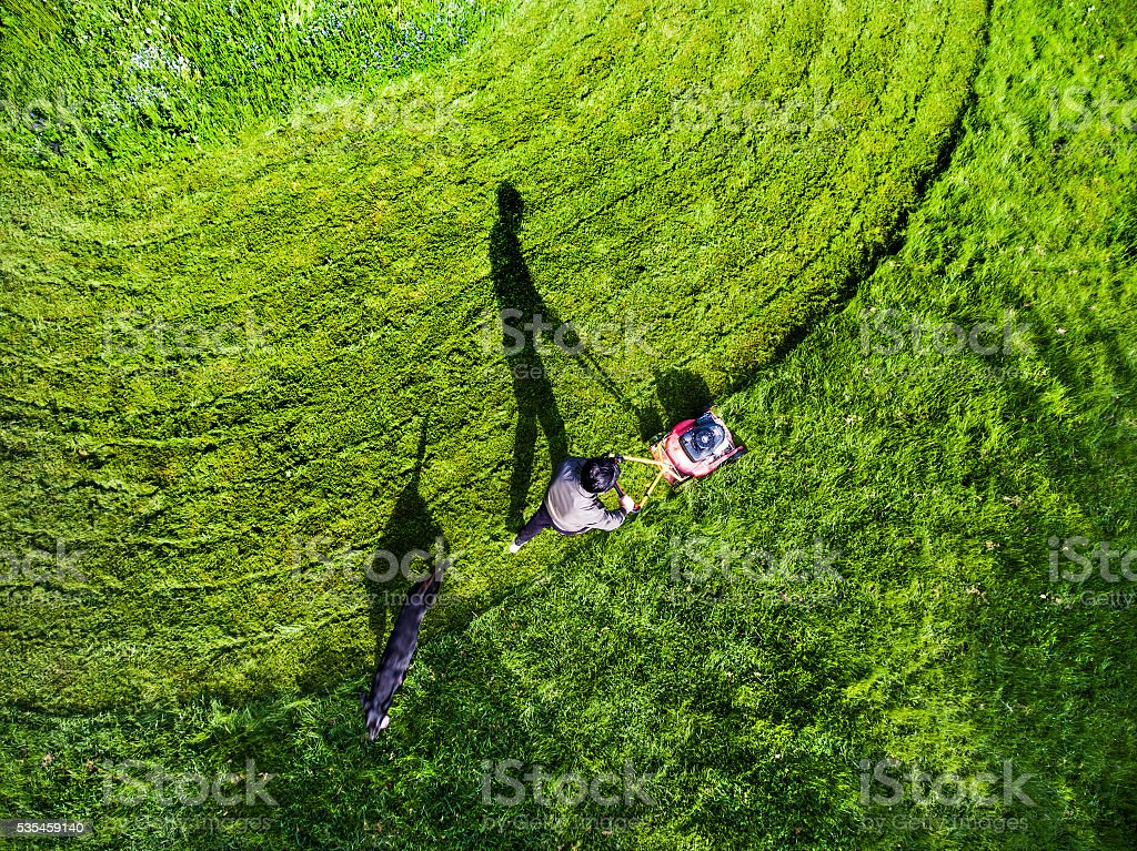 Grass Trimming Lawnmower stock photo