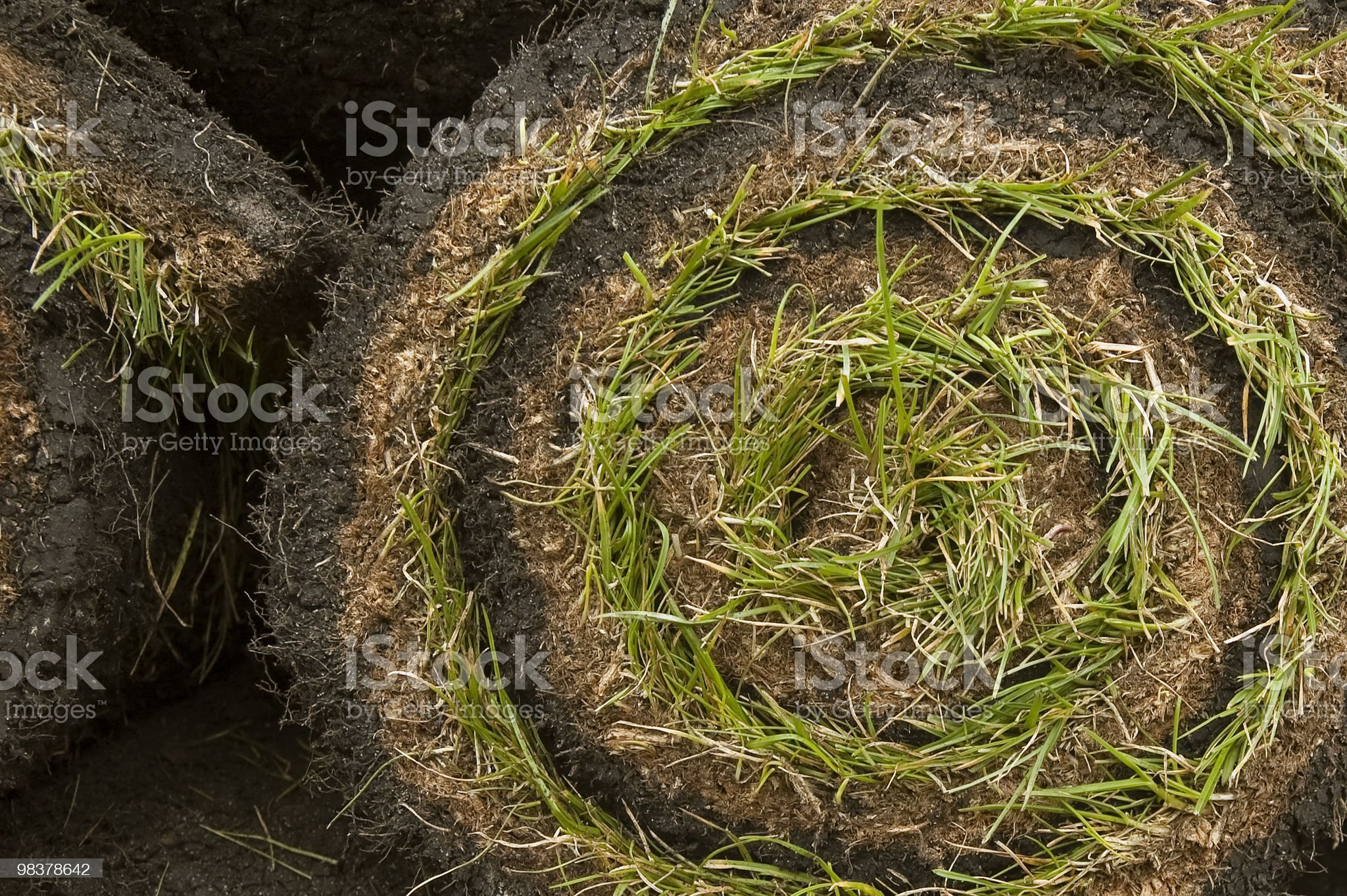 grass turf royalty-free stock photo