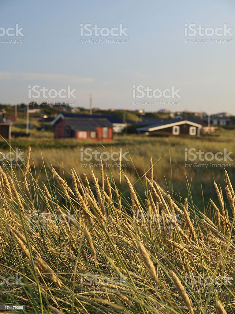 Grass with cottages in the background stock photo