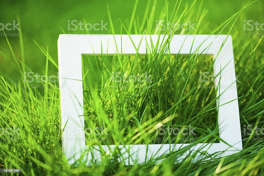 Grass with Empty Frame royalty-free stock photo