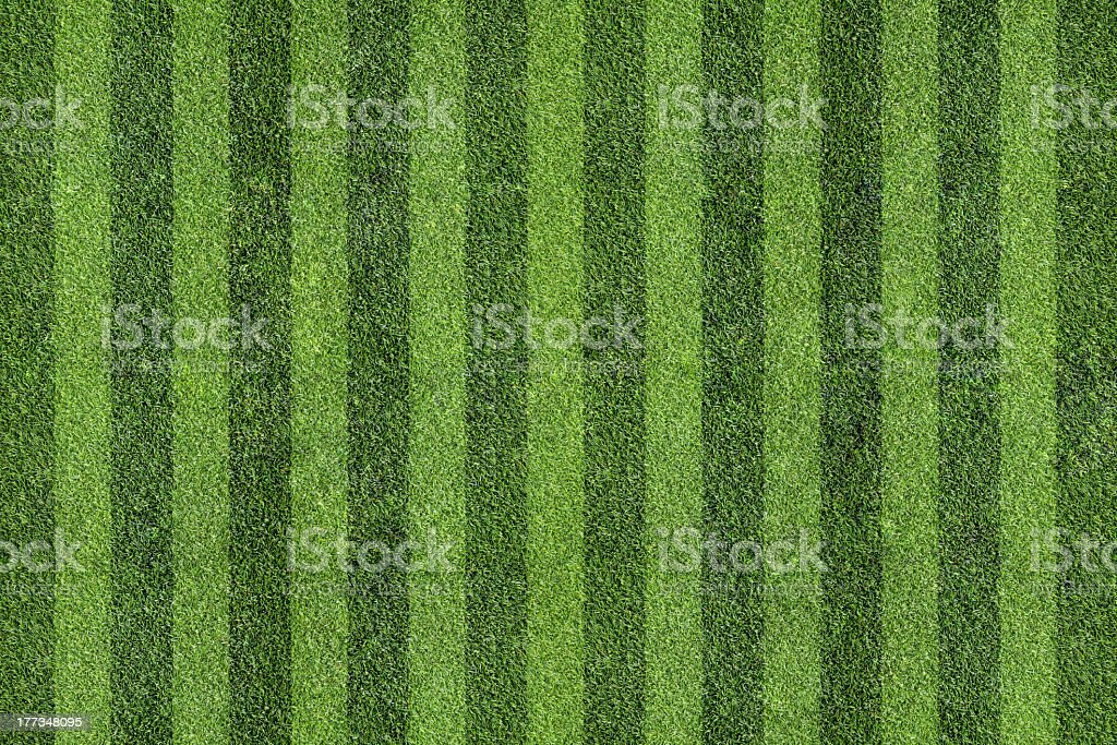 Grass with sections striped darker and lighter green royalty-free stock photo