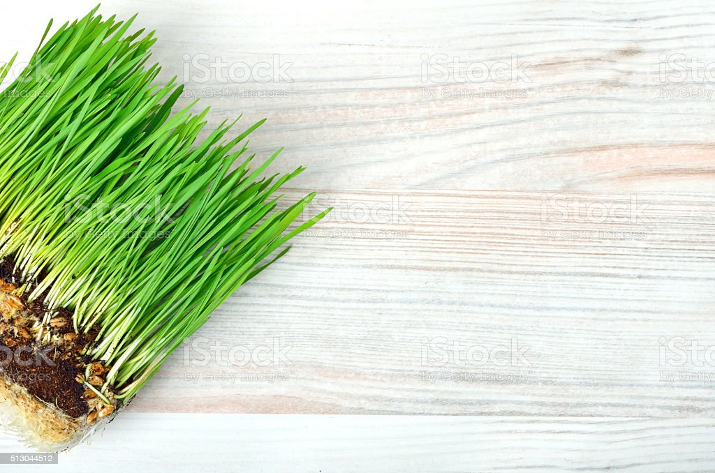 grass with turf isolated on white stock photo