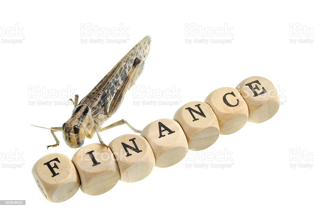 grasshopers on finance royalty-free stock photo