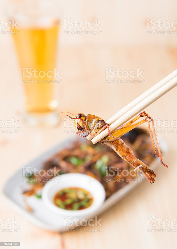 Grasshopper fried in chopstick stock photo