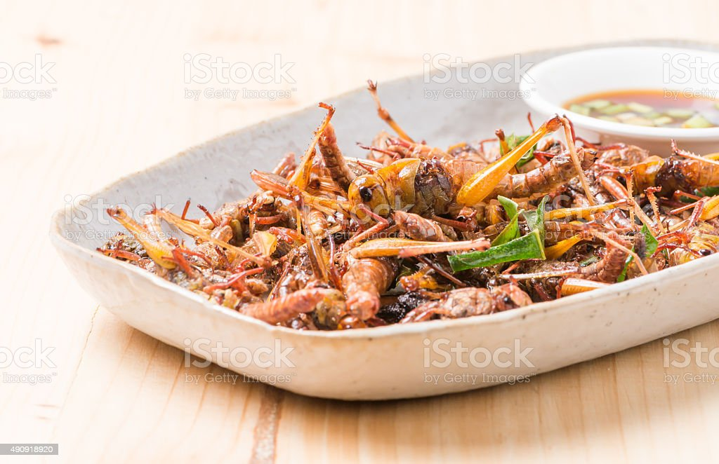Grasshopper fried in dish. stock photo