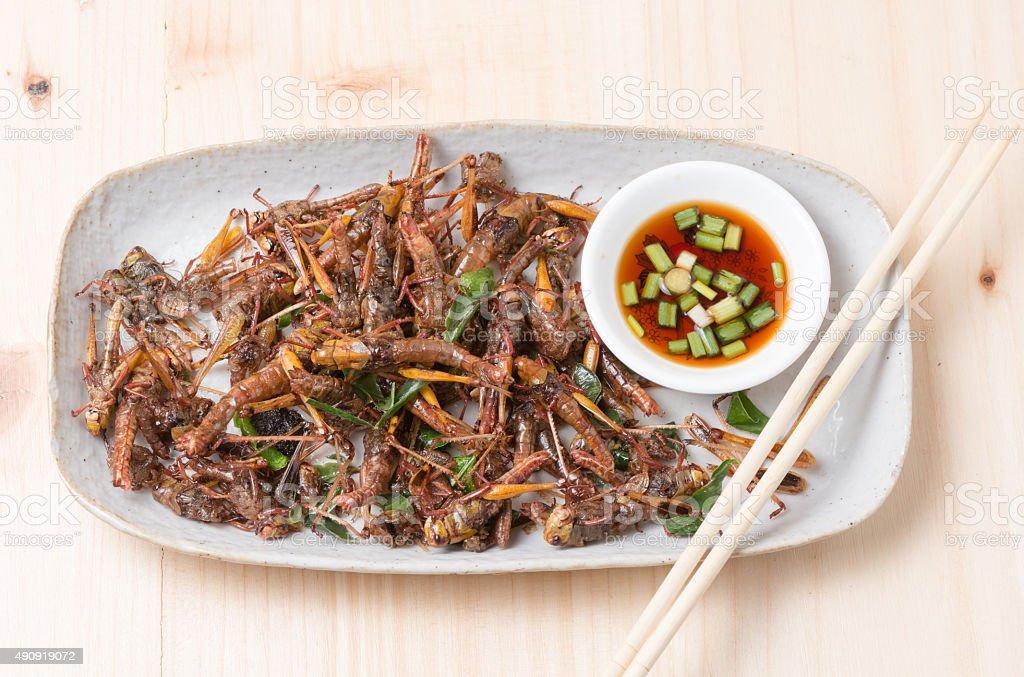 Grasshopper fried in dish. stock photo