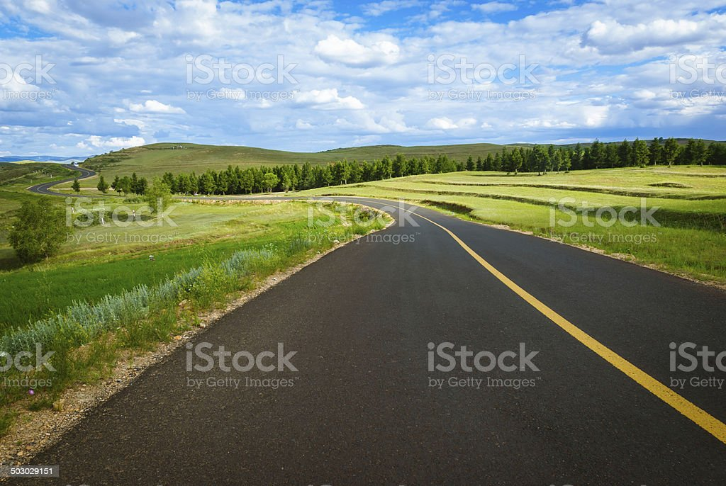 grassland and Country road royalty-free stock photo