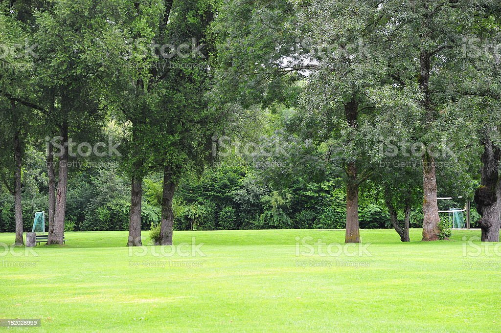 Grassland and Forest stock photo