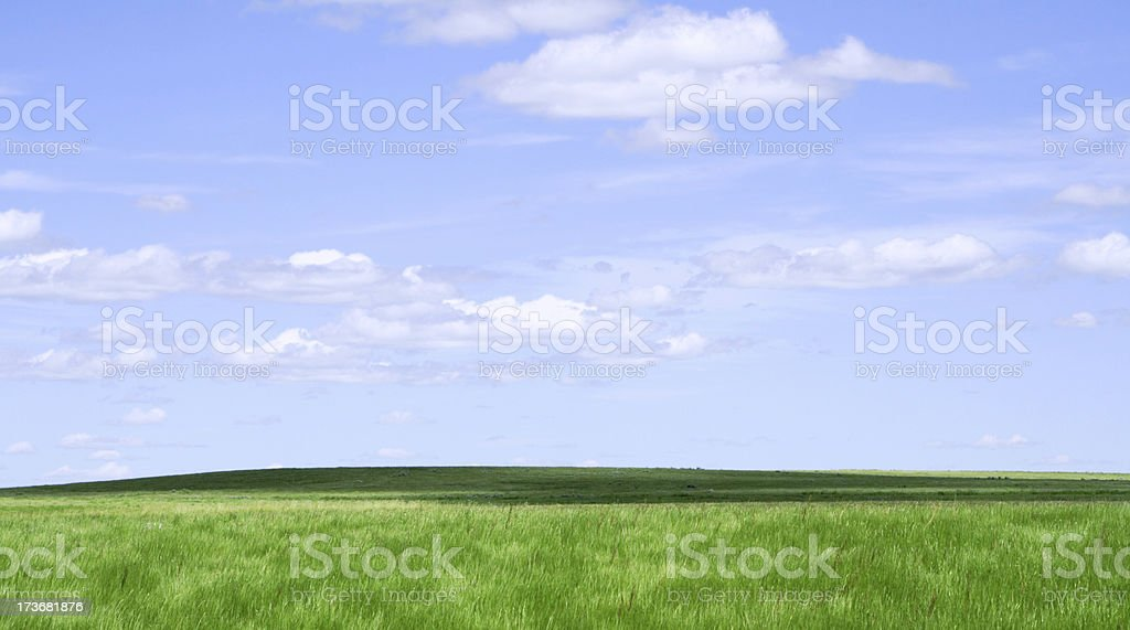 Grassland and horizon stock photo