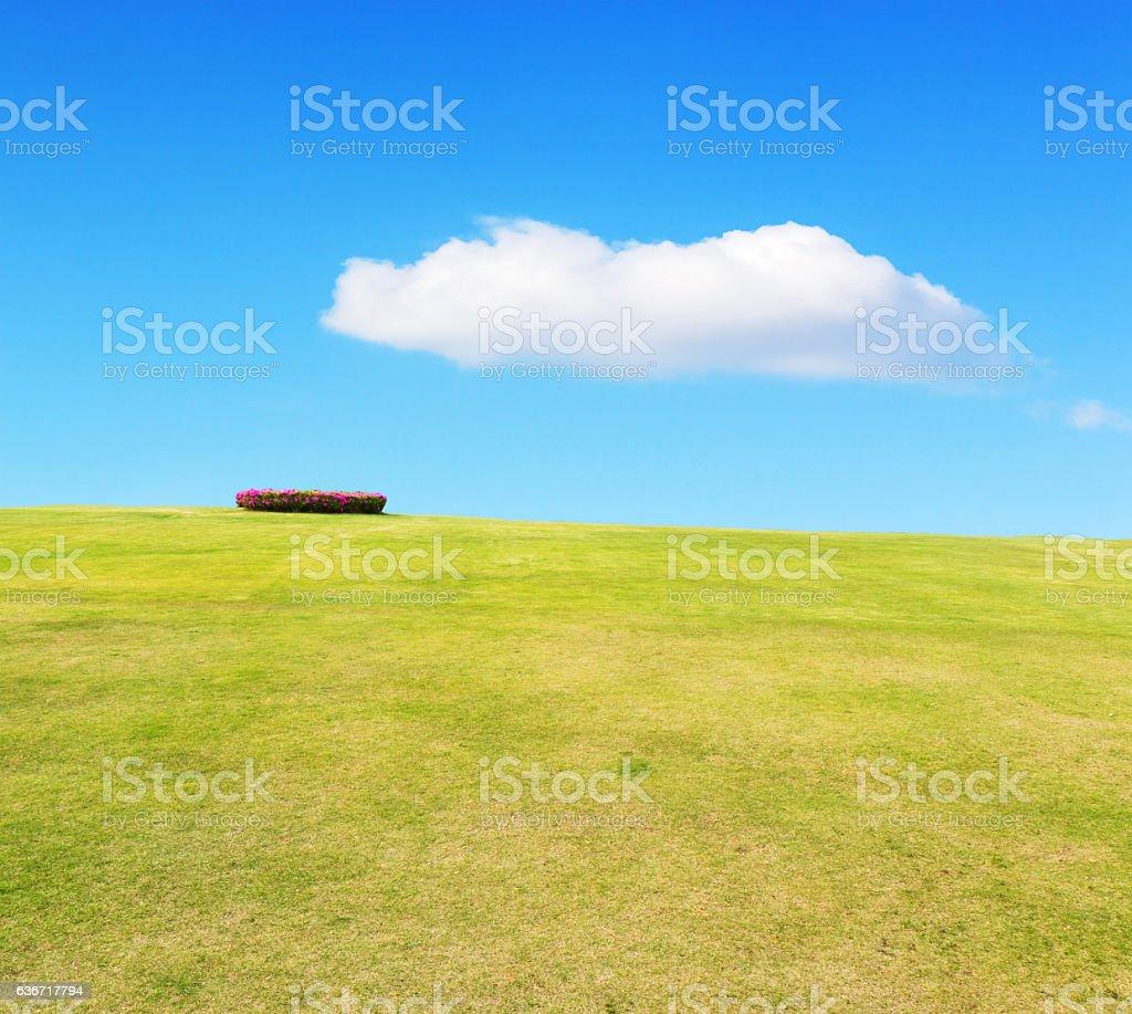 Grassland and sky with cloud beautiful landscape. stock photo