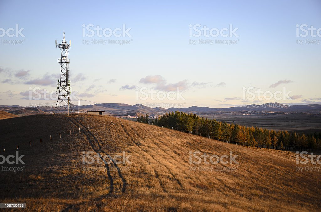 Grassland in the morning stock photo