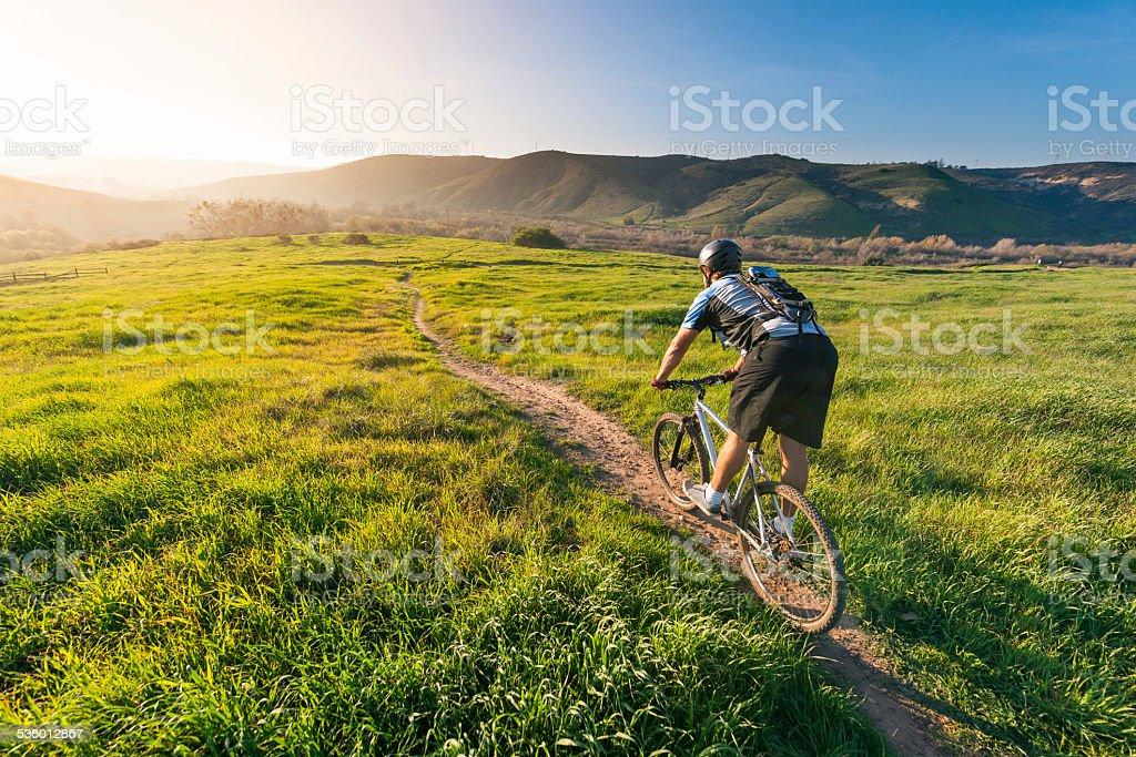 Grassland Mountain Biker stock photo