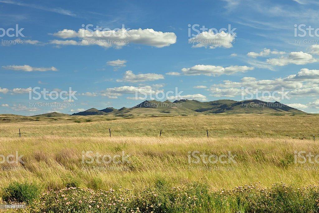 Grassland, Mountains & Sky royalty-free stock photo