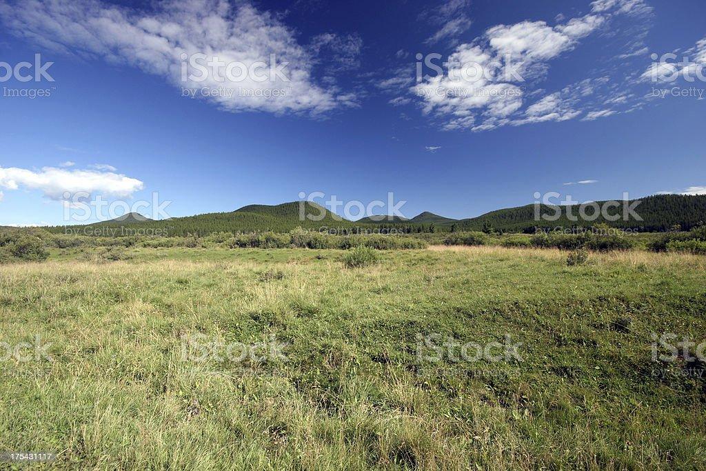 Grassland Plains royalty-free stock photo