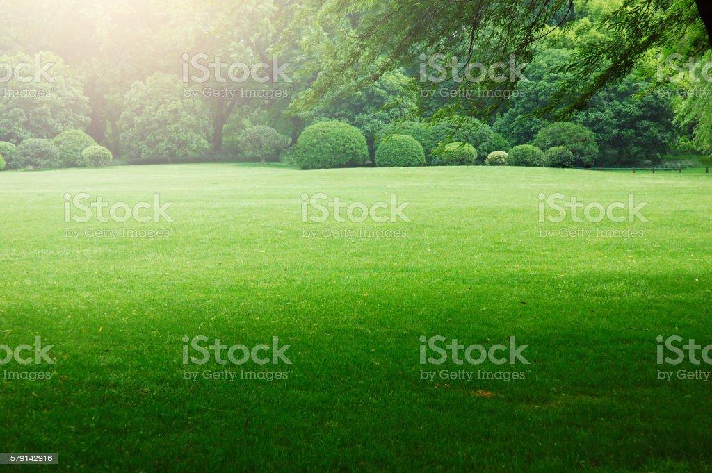 Grassland scenery at Hongzhou,China. stock photo
