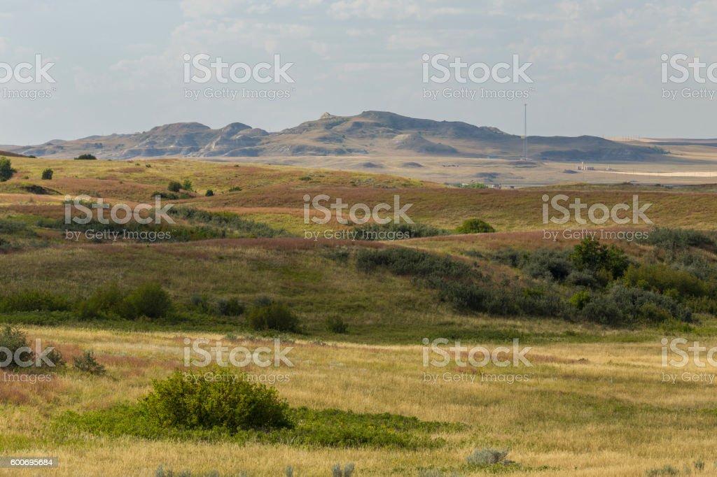 Grassland Scenic stock photo