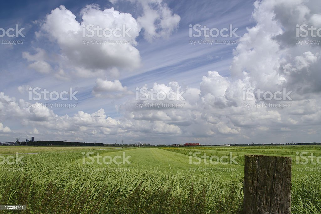 Grassland with farms and a city. royalty-free stock photo