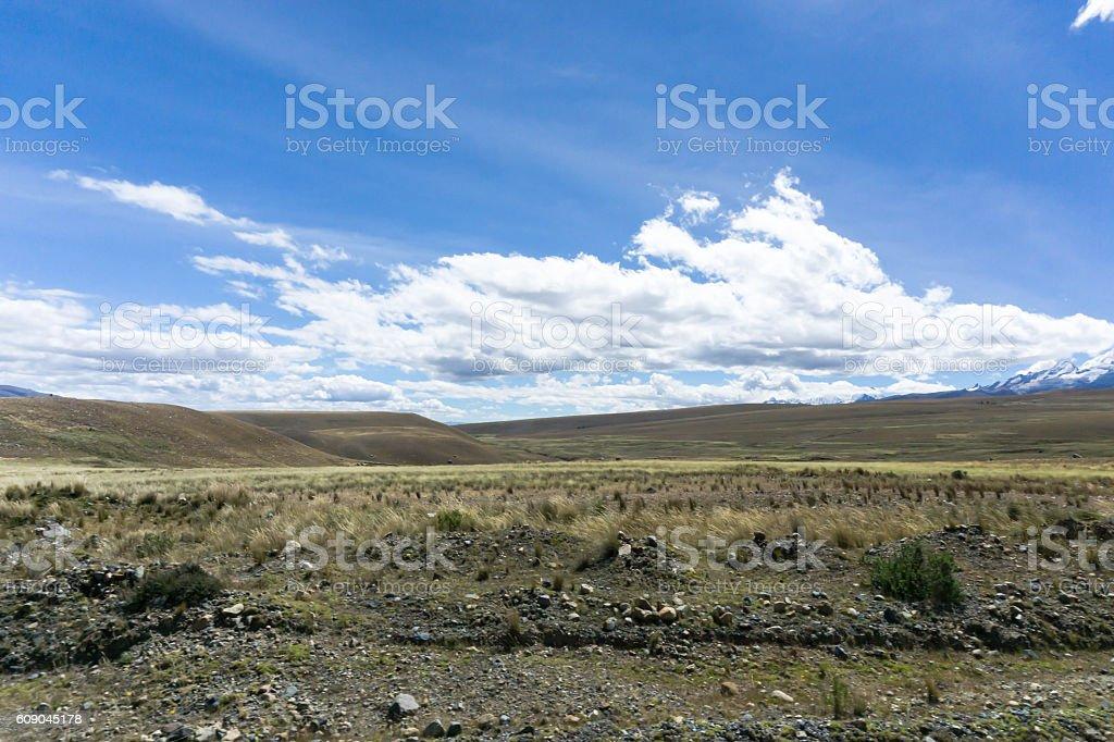 grasslands in Peru stock photo