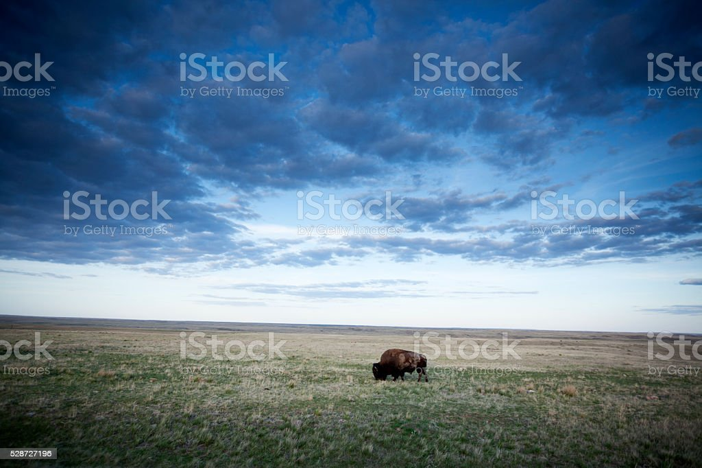 Grasslands National Park Saskatchewan Canada stock photo