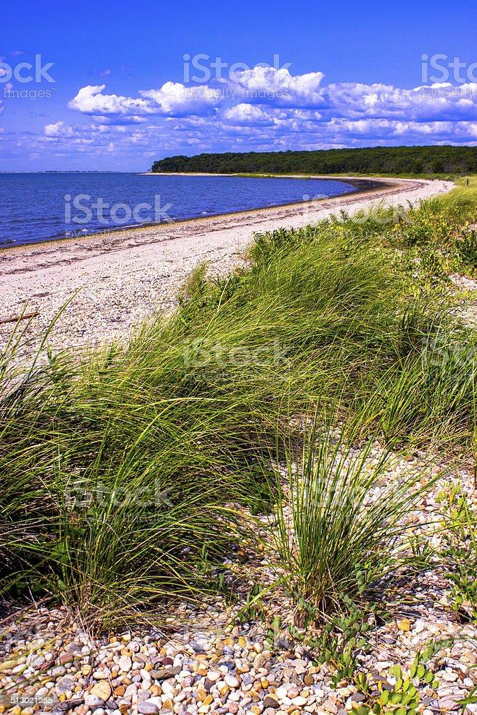 Grassy Beach stock photo