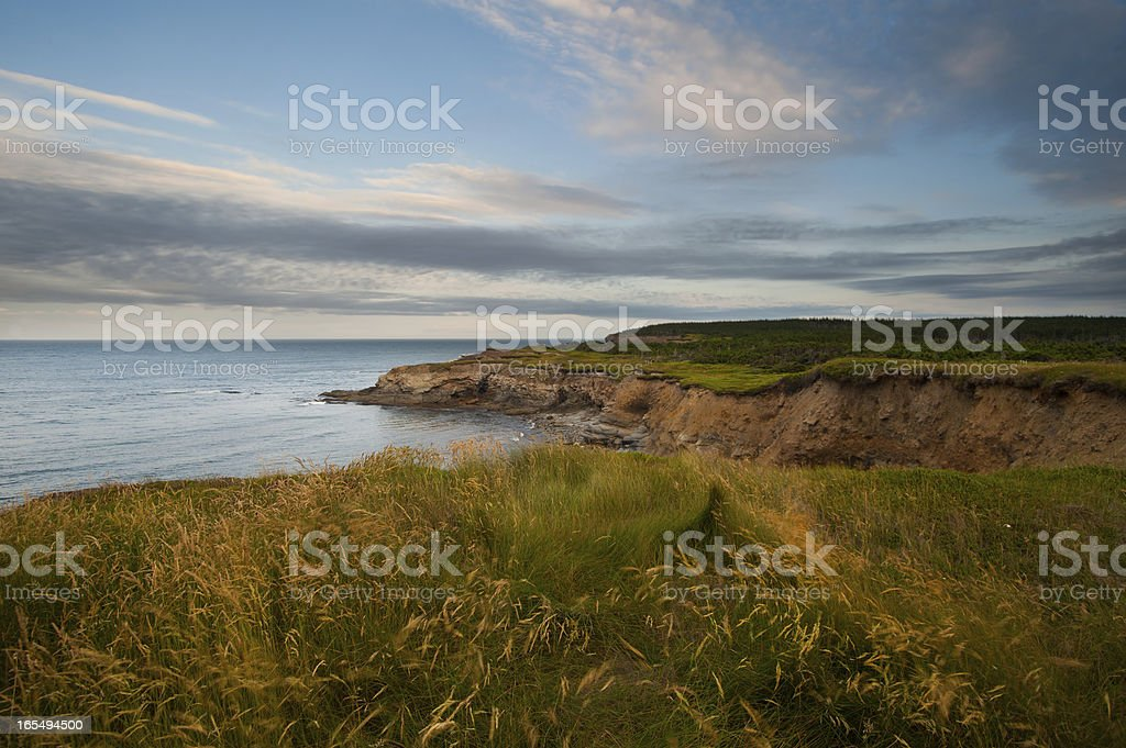 Grassy Cliffs royalty-free stock photo