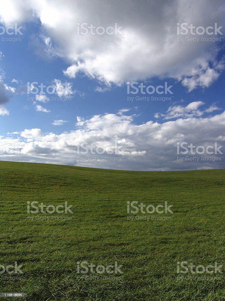 Grassy Field, Blue Sky, Puffy Clouds royalty-free stock photo