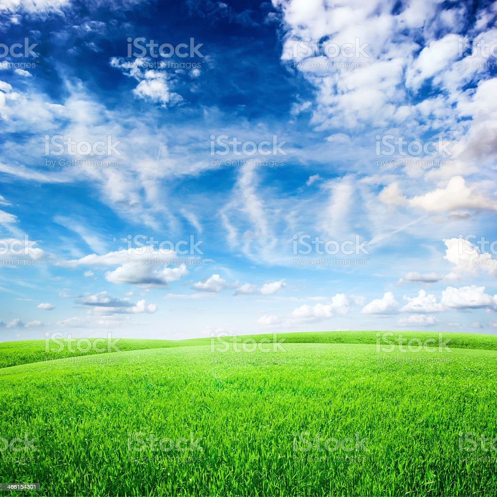 A grassy field with whispy clouds stock photo