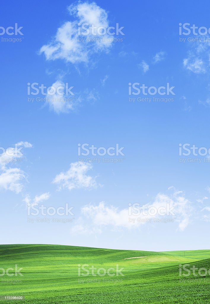 A grassy green field with a clear blue partly cloudy sky  royalty-free stock photo