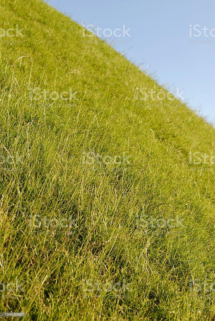 Grassy hill royalty-free stock photo