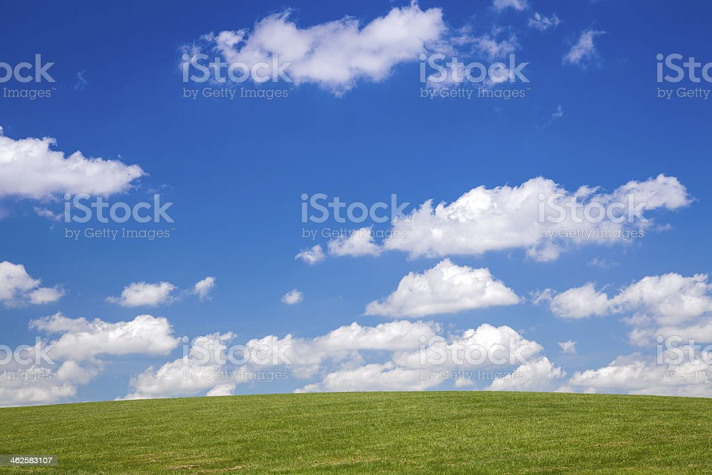 Grassy Hill royalty-free stock photo