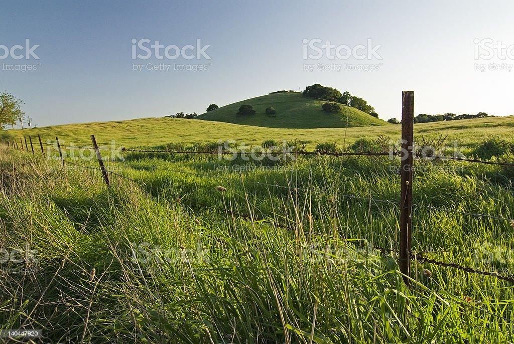 grassy hills royalty-free stock photo