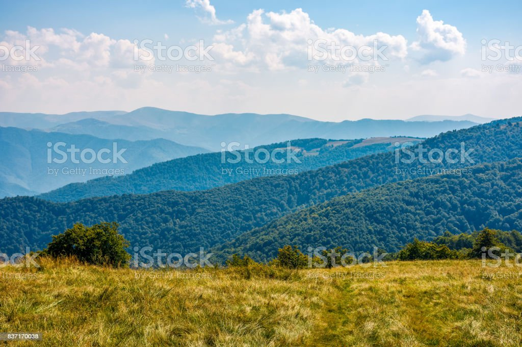 grassy hillside on high altitude ridge in autumn stock photo