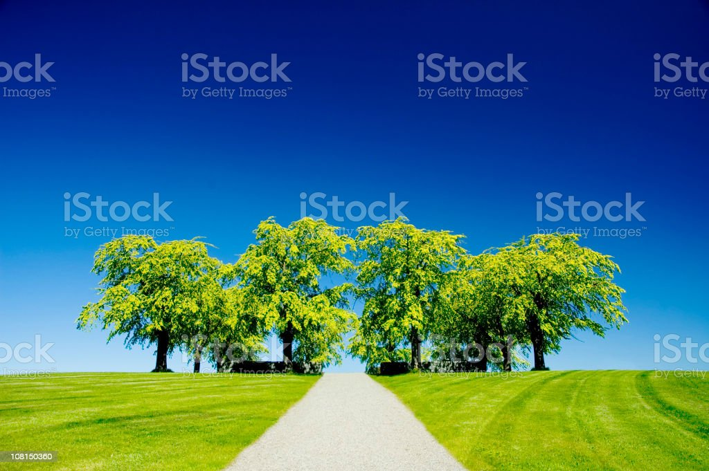 Grassy Knoll with Road royalty-free stock photo