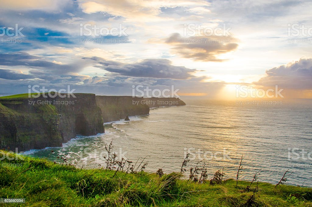 Grassy ledge at the Cliffs of Moher stock photo