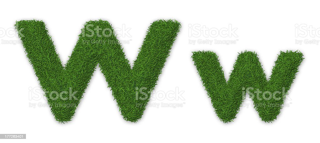 Grassy letter W royalty-free stock photo
