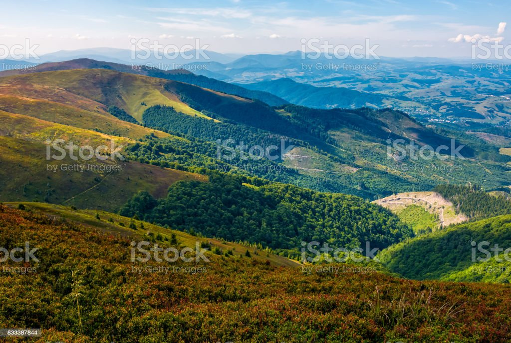 grassy mountain tops with forests on slopes stock photo