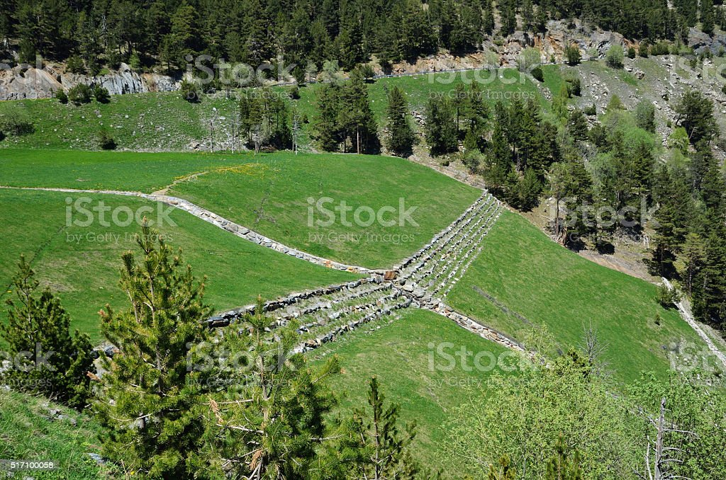 Grassy pastures on the mountain slope stock photo