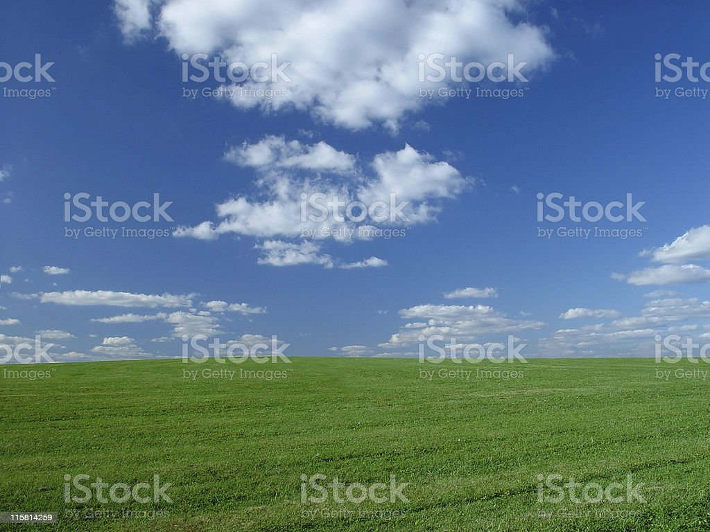 Grassy Plain stock photo